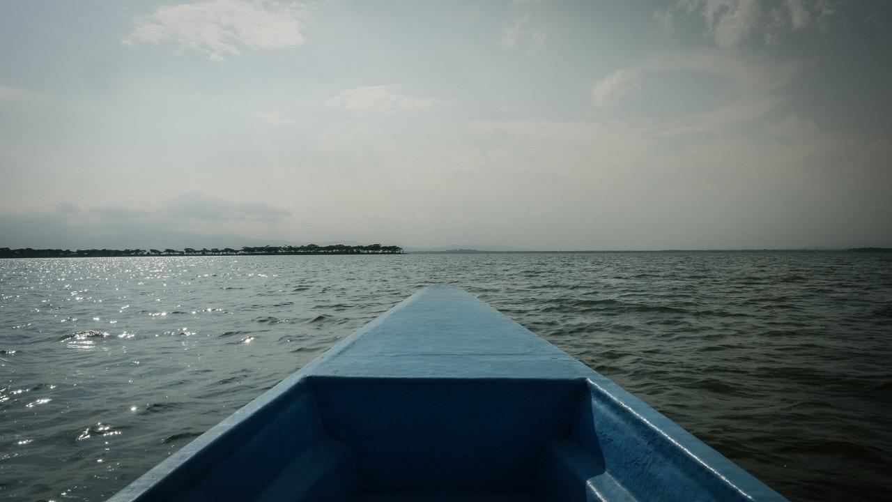 Safari bateau naivasha